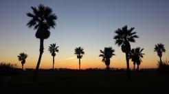 Sunset in Rota